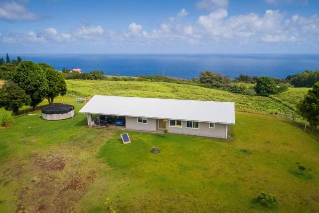 35-1861 Makai Cross Rd, Laupahoehoe, HI 96764 (MLS #633423) :: Song Real Estate Team | LUVA Real Estate