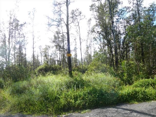 16-607 Road G (Wao Kele), Mountain View, HI 96771 (MLS #633507) :: Elite Pacific Properties
