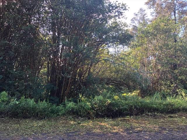 Napua St, Keaau, HI 96749 (MLS #633535) :: Aloha Kona Realty, Inc.