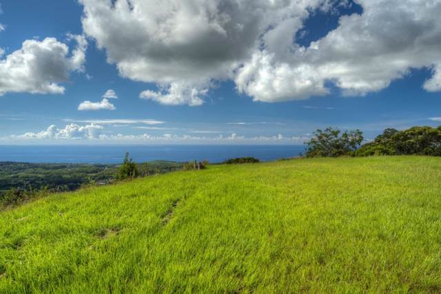 Uha Rd, Kalaheo, HI 96741 (MLS #633546) :: Elite Pacific Properties