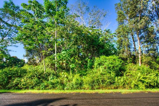 Silversword Ct, Kurtistown, HI 96760 (MLS #633568) :: Song Real Estate Team | LUVA Real Estate