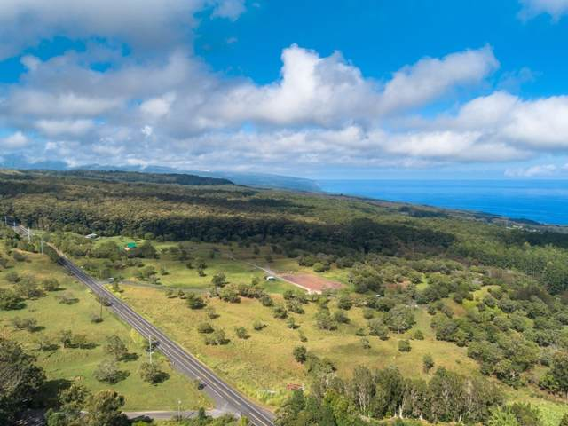 Pua Ohia Pl, Honokaa, HI 96727 (MLS #633737) :: Iokua Real Estate, Inc.