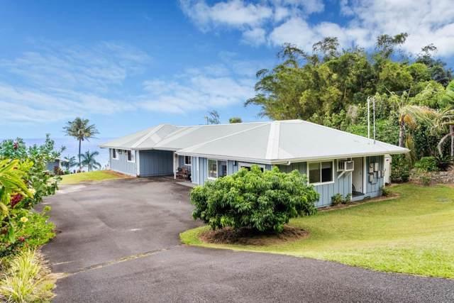 35-2054 Old Mamalahoa Hwy, Laupahoehoe, HI 96764 (MLS #633992) :: Elite Pacific Properties