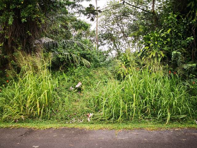 S Puni Mauka Lp, Pahoa, HI 96778 (MLS #634062) :: Steven Moody
