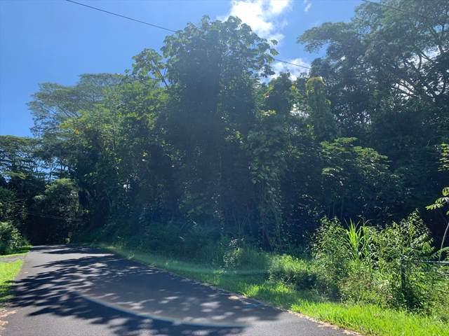 15-2728 N Ono St, Pahoa, HI 96778 (MLS #634191) :: Aloha Kona Realty, Inc.