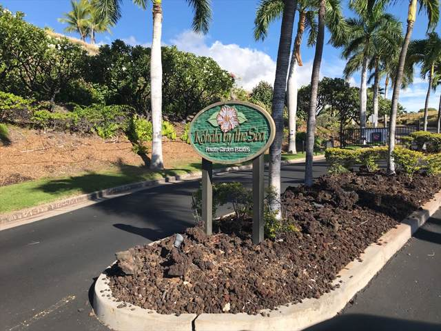 Address Not Published, North Kohala, HI 96743 (MLS #634328) :: Elite Pacific Properties