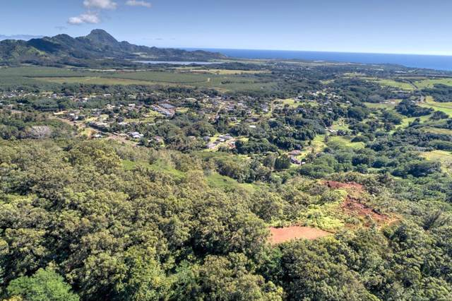 Uha Rd, Kalaheo, HI 96756 (MLS #634511) :: Kauai Exclusive Realty