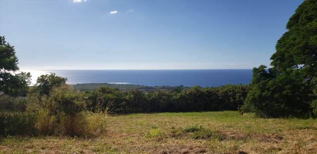 Address Not Published, Captain Cook, HI 96704 (MLS #634512) :: Song Real Estate Team | LUVA Real Estate