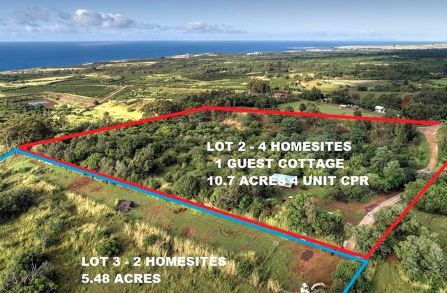Ihu Rd, Kalaheo, HI 96741 (MLS #634587) :: Kauai Exclusive Realty