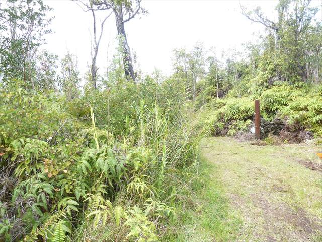 11-2352 Kaleponi Dr, Volcano, HI 96785 (MLS #634774) :: Elite Pacific Properties