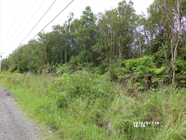Kaleponi Dr, Volcano, HI 96785 (MLS #634788) :: Elite Pacific Properties