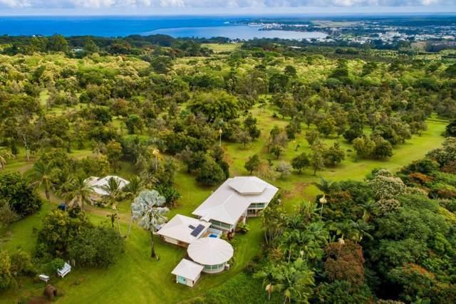 229 Makana Nui Ln, Hilo, HI 96720 (MLS #634872) :: Steven Moody