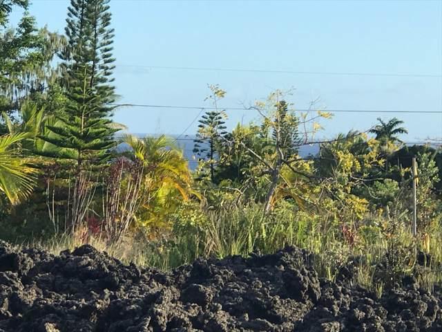 Address Not Published, Pahoa, HI 96778 (MLS #634881) :: Elite Pacific Properties
