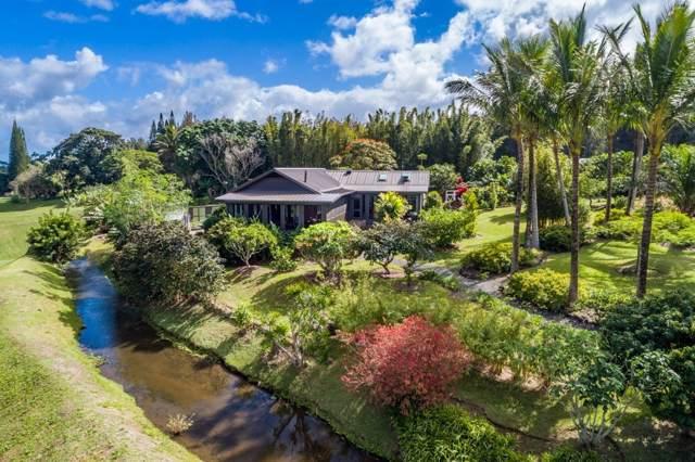 55-733 Kahei Rd, Hawi, HI 96719 (MLS #634948) :: Elite Pacific Properties