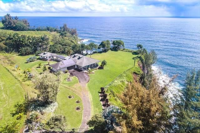 27-175 Koae Rd, Papaikou, HI 96781 (MLS #635044) :: Elite Pacific Properties