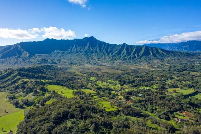 2818 Kamookoa Rd, Kilauea, HI 96754 (MLS #635063) :: Team Lally