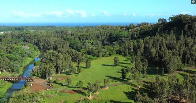 Kuhio Hwy, Kilauea, HI 96754 (MLS #635067) :: Team Lally