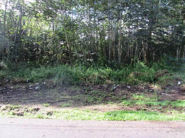 S Nehu St, Pahoa, HI 96778 (MLS #635377) :: Aloha Kona Realty, Inc.