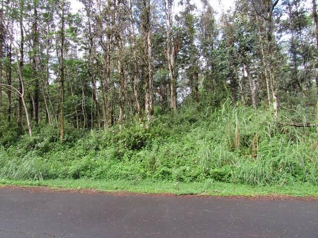 Holiday Rd, Pahoa, HI 96778 (MLS #635380) :: Song Real Estate Team   LUVA Real Estate