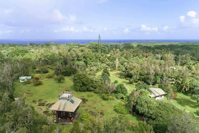 14-469 Pakaka Rd, Pahoa, HI 96778 (MLS #635438) :: Aloha Kona Realty, Inc.