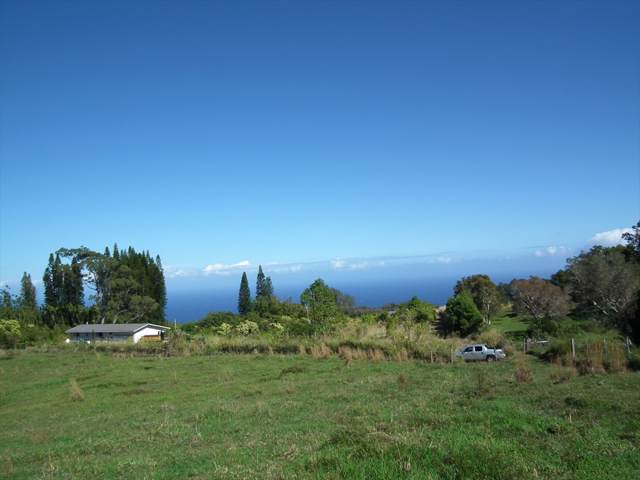 Address Not Published, Honokaa, HI 96727 (MLS #635556) :: Song Team | LUVA Real Estate