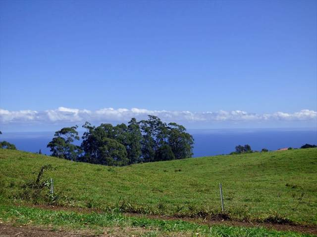 44-3099 Kula Kahiko Rd, Paauilo, HI 96776 (MLS #635847) :: Song Team | LUVA Real Estate