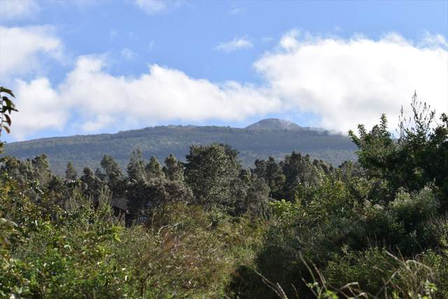 Kuahewa Rd., Holualoa, HI 96725 (MLS #635874) :: Elite Pacific Properties