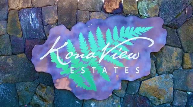74-4711 Kaianiani Place, Kailua-Kona, HI 96740 (MLS #636014) :: Steven Moody
