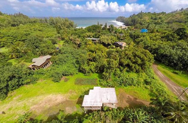 4600 Ananalu Rd, Hanalei, HI 96722 (MLS #636019) :: Elite Pacific Properties