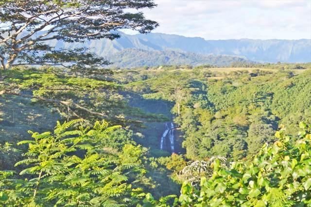 5000-B NS Kahiliholo Rd, Kilauea, HI 96754 (MLS #636024) :: Kauai Real Estate Group