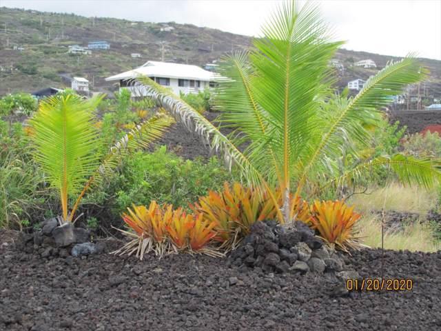 Kai Ave, Captain Cook, HI 96704 (MLS #636055) :: Aloha Kona Realty, Inc.
