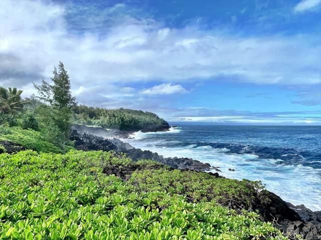 14-3543 Government Beach Rd, Pahoa, HI 96778 (MLS #636229) :: Aloha Kona Realty, Inc.