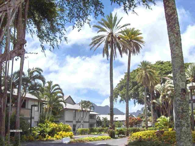 4121 Rice St, Lihue, HI 96766 (MLS #636281) :: Song Real Estate Team   LUVA Real Estate