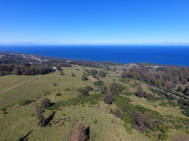 Lehua St, Honokaa, HI 96727 (MLS #636358) :: Elite Pacific Properties