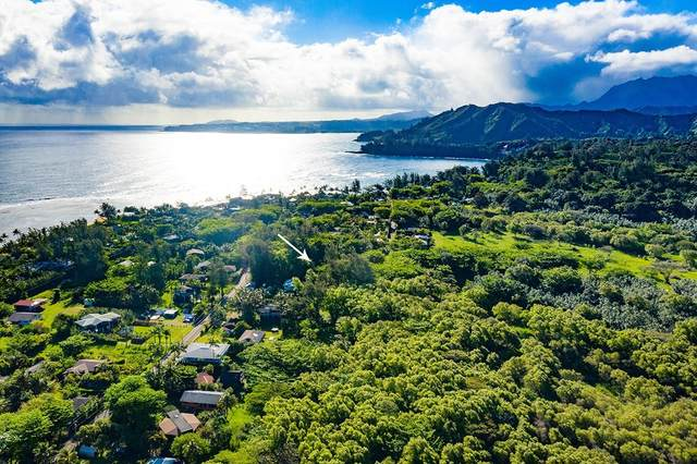 7228 Alamihi Rd, Hanalei, HI 96722 (MLS #636705) :: Elite Pacific Properties