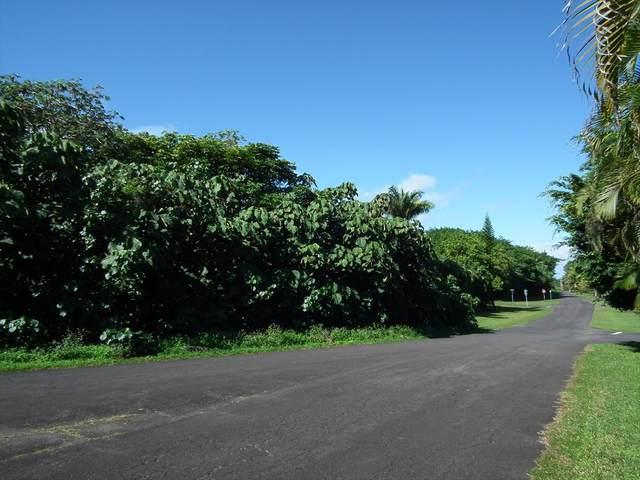 N Popaa St, Pahoa, HI 96778 (MLS #636812) :: Song Real Estate Team | LUVA Real Estate