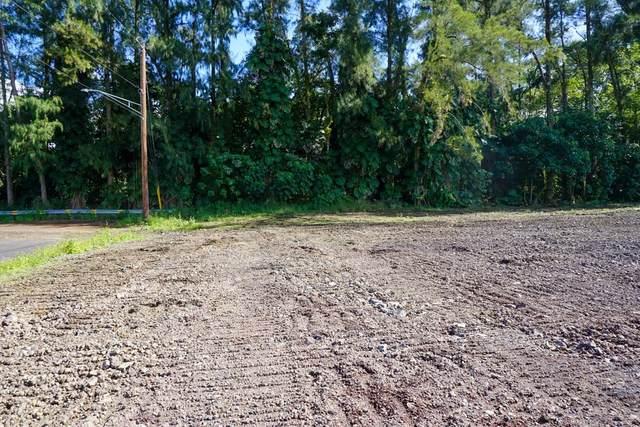 16-4003 Ohiohi St, Keaau, HI 96749 (MLS #636851) :: Iokua Real Estate, Inc.