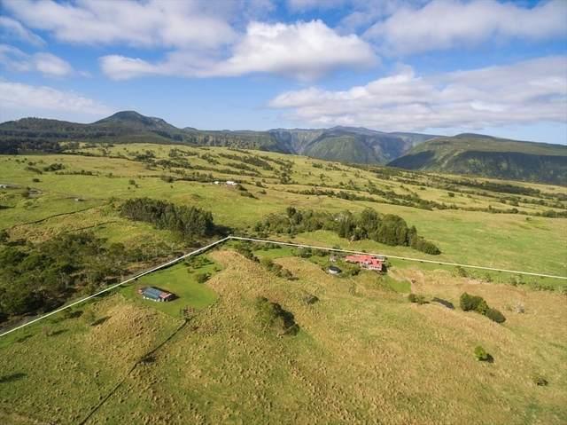 47-5330 W West Waikoekoe Ln, Honokaa, HI 96727 (MLS #636881) :: Elite Pacific Properties