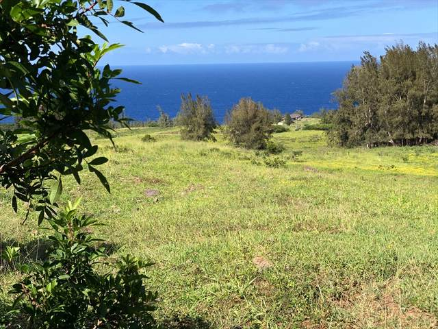 Address Not Published, Honokaa, HI 96727 (MLS #636981) :: Iokua Real Estate, Inc.
