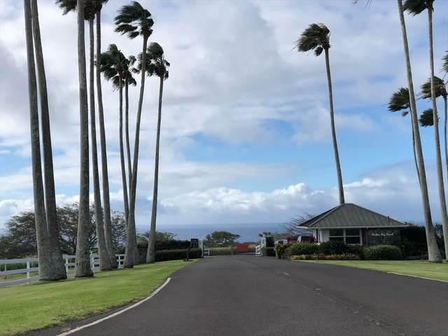 Puakea Dr, Hawi, HI 96719 (MLS #637040) :: Elite Pacific Properties