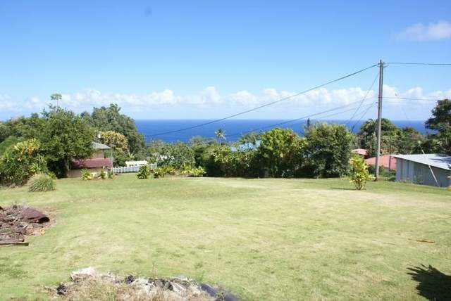Address Not Published, Laupahoehoe, HI 96764 (MLS #637204) :: Aloha Kona Realty, Inc.