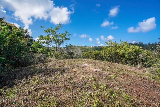 Address Not Published, Anahola, HI 96703 (MLS #637280) :: Kauai Exclusive Realty