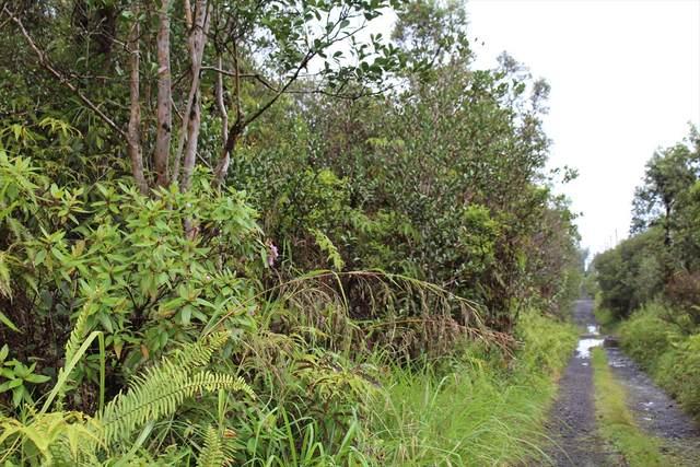 Road 2 (Ao), Mountain View, HI 96771 (MLS #637315) :: Aloha Kona Realty, Inc.