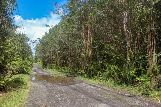 16-1381 Road 5 (Uau), Mountain View, HI 96771 (MLS #637354) :: Aloha Kona Realty, Inc.