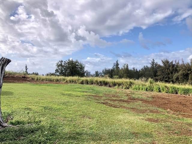 39-3195 Niu Village Lp, Ookala, HI 96774 (MLS #637366) :: Hawai'i Life