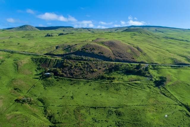 62-2741 Kohala Mountain Rd, Kamuela, HI 96743 (MLS #637453) :: Song Team   LUVA Real Estate