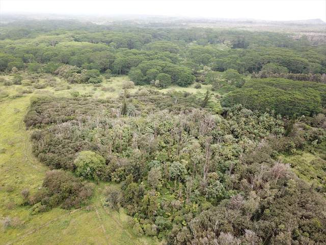 South Rd, Pahoa, HI 96778 (MLS #637560) :: Corcoran Pacific Properties