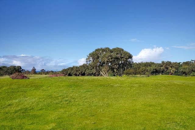 3059 Kiahuna Plantation Dr, Koloa, HI 96756 (MLS #637619) :: Elite Pacific Properties