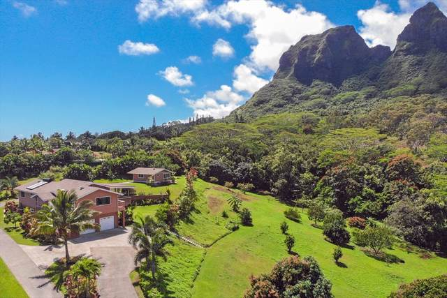 4881 Kuhio Hwy, Anahola, HI 96703 (MLS #637621) :: Elite Pacific Properties