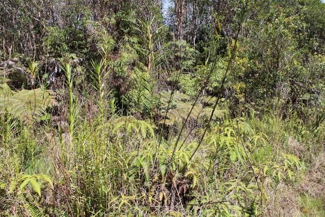 Road 10, Mountain View, HI 96771 (MLS #637630) :: Song Team   LUVA Real Estate